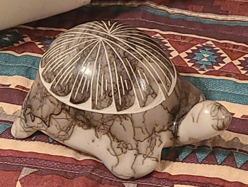 Navajo Horse Hair Pottery Turtle