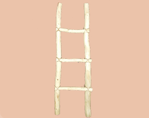 Tarahumara southwestern wooden log ladder. 4'