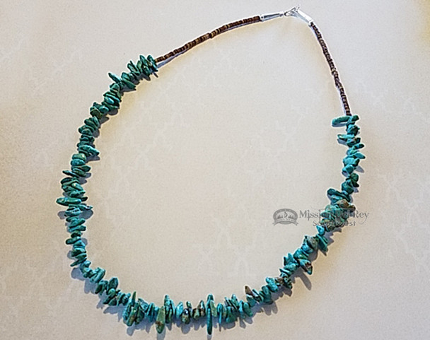 Navajo Indian Jewelry Beaded Necklace -Turquoise