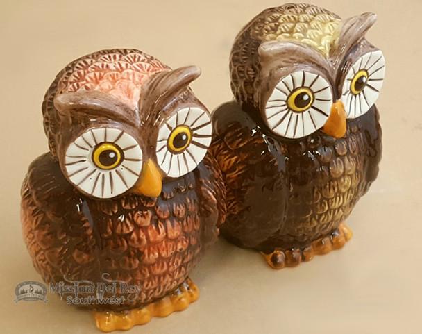 "Southwestern Salt & Pepper Shakers 5"" - Owls"