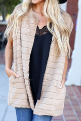 Taupe - Luxe Faux Fur Vest from Dress Up