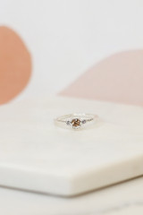 Flat Lay of a silver ring in the Assorted Ring Set