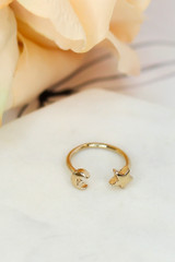 Flat Lay of the star and moon ring in the Dainty Ring Set