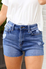 Close Up of the High-Rise Distressed Denim Shorts