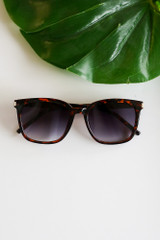 Tortoise - cute tortoise sunglasses for summer