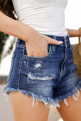 High Waist Distressed Shorts Side View