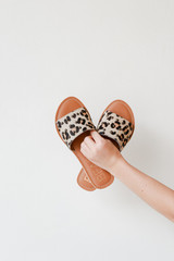 Leopard Slide Sandals on a white background by MATISSE FOOTWEAR