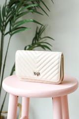 Quilted Crossbody Bag in Ivory Front View