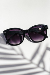 Black - Flat Lay of Square Sunglasses