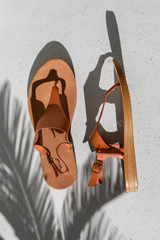 Flat Lay of Ankle Strap Sandals