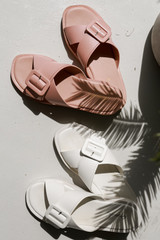Buckled Slide Sandals in Blush and White Top View