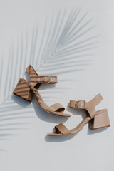 Flat Lay of Ankle Strap Heels in Tan