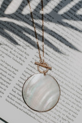 Close Up of a Shell Necklace