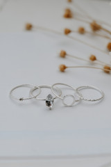Silver - Flat Lay of a Ring Set