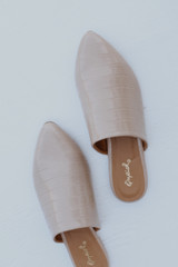 Pointed Toe Mules on a white background