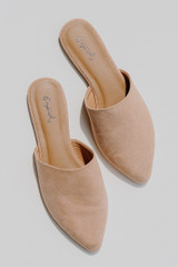 Flat Lay of Pointed Toe Mules