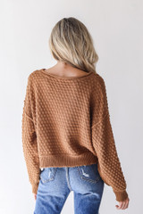 Sweater in Camel Back View