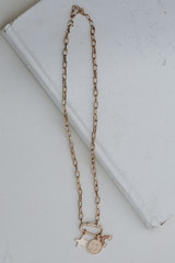 Flat Lay of a Gold Charm Necklace
