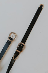 Flat Lay of a Snake Double Buckle Belt