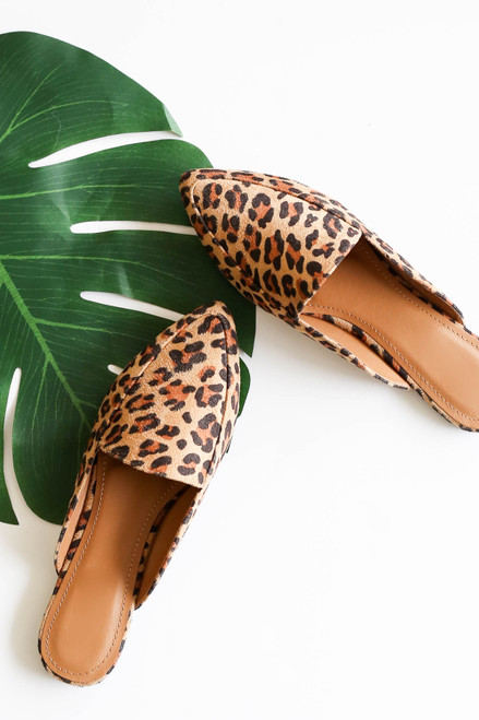 Flay Lay of Leopard Print Slip On Loafers and Plant