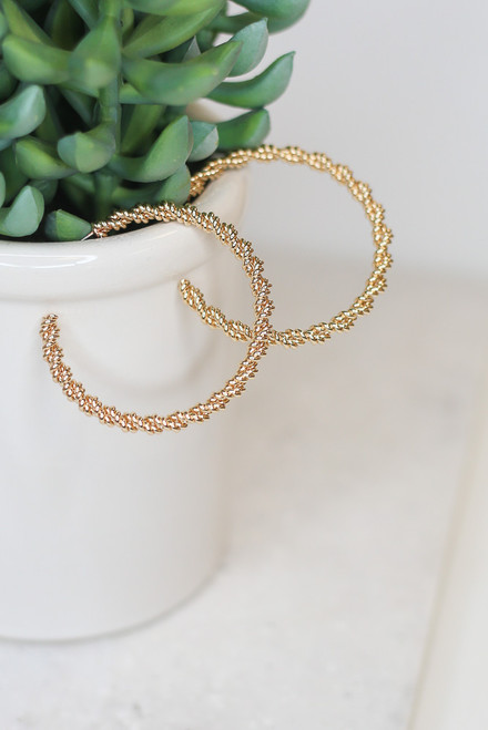 Gold - Twisted Rope Hoop Earrings from Dress Up