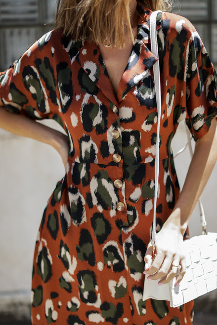 Rust - Leopard Maxi Dress from Dress Up