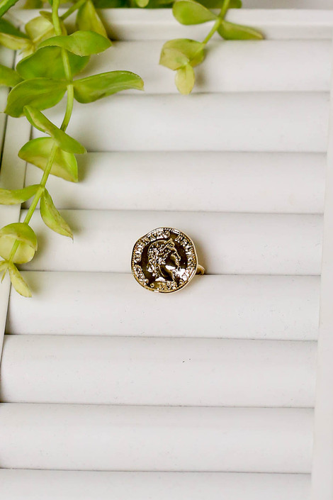 Gold - Coin Ring Flat Lay