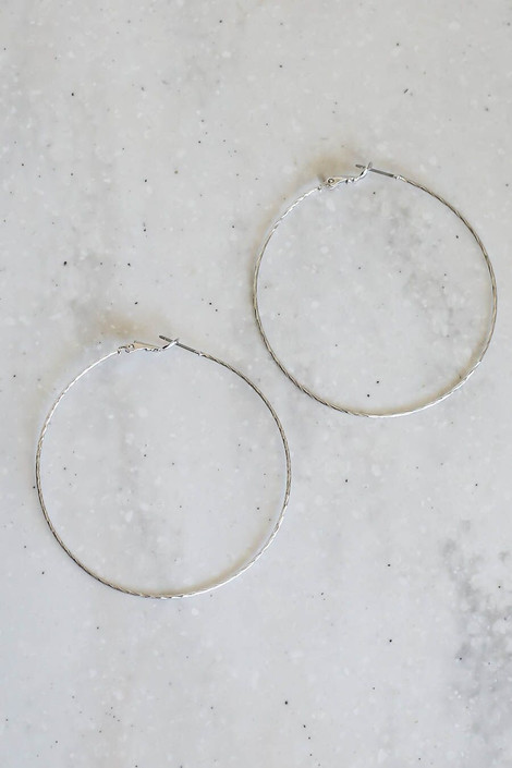 Silver - Twisted Hoops Flat Lay