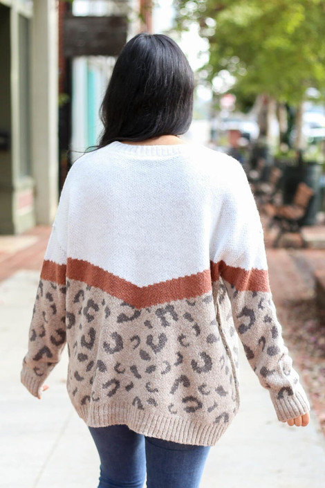 Model of Dress Up wearing the Color Block Leopard Sweater in Taupe - Back View