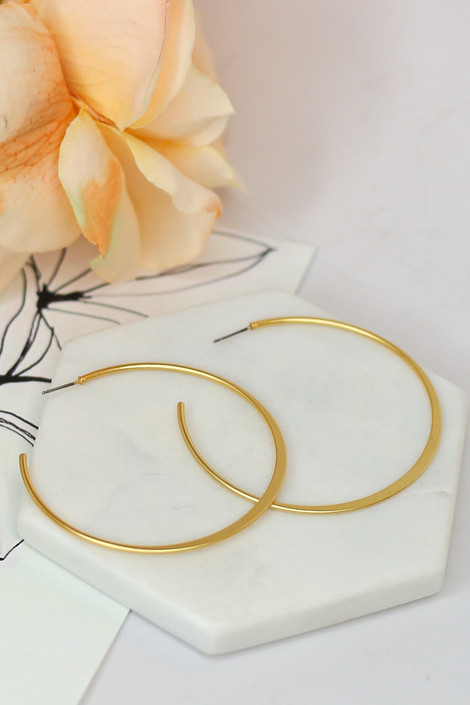 Gold - Skinny Hoop Earrings from Dress Up