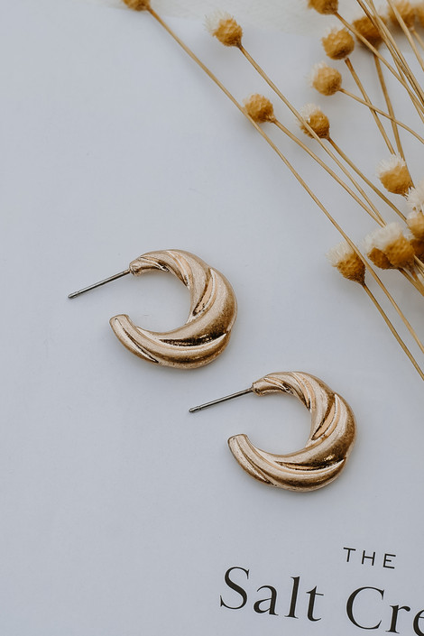 Gold Twisted Hoop Earrings from Dress Up