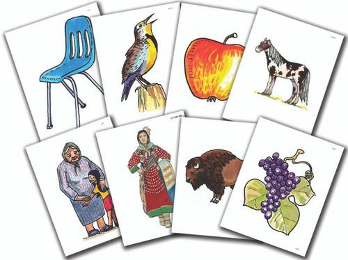 Crow Level 1 Flashcards