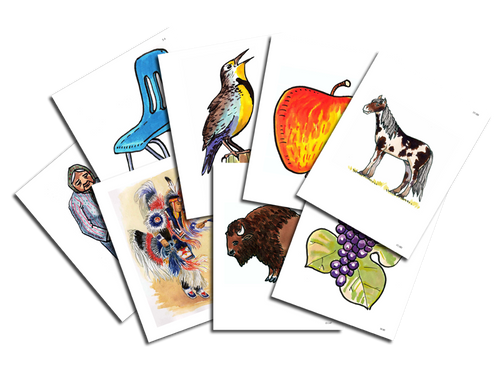 Lakota Level 1 Flashcard Set