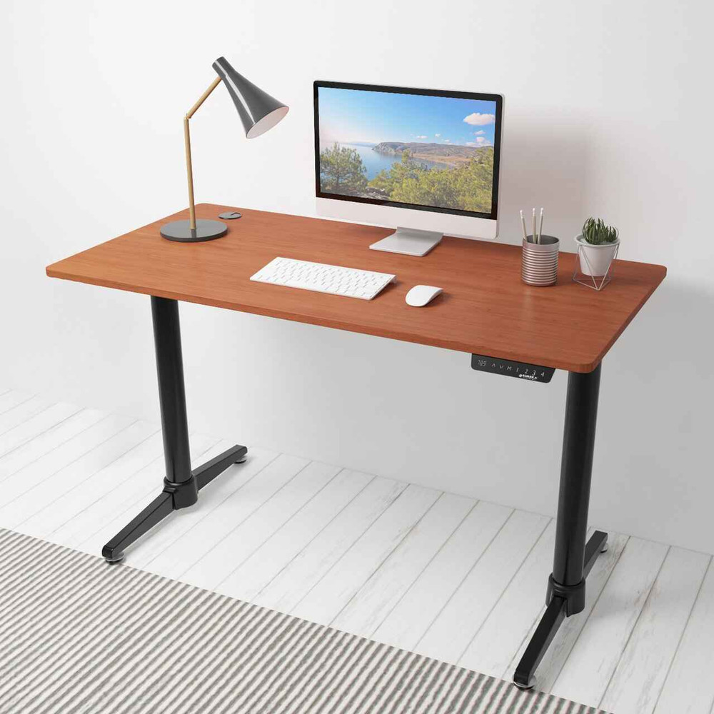 Eureka Ergonomic® Height Adjustable Electric Standing Desk, Cherry - ERK-EHD-I1-C
