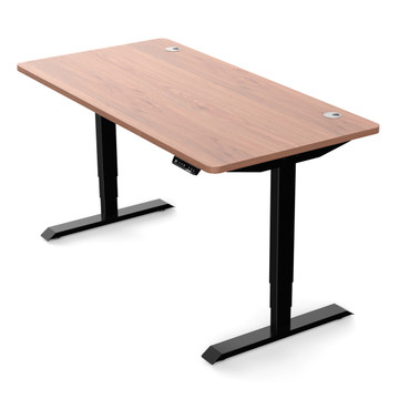 Eureka Ergonomic® Standing Desk E60 - Electric Height-Adjustable Desk - Wood/Black - 30 Day Risk Free Guarantee Plus FREE Shipping ERK-ESDF-SS1