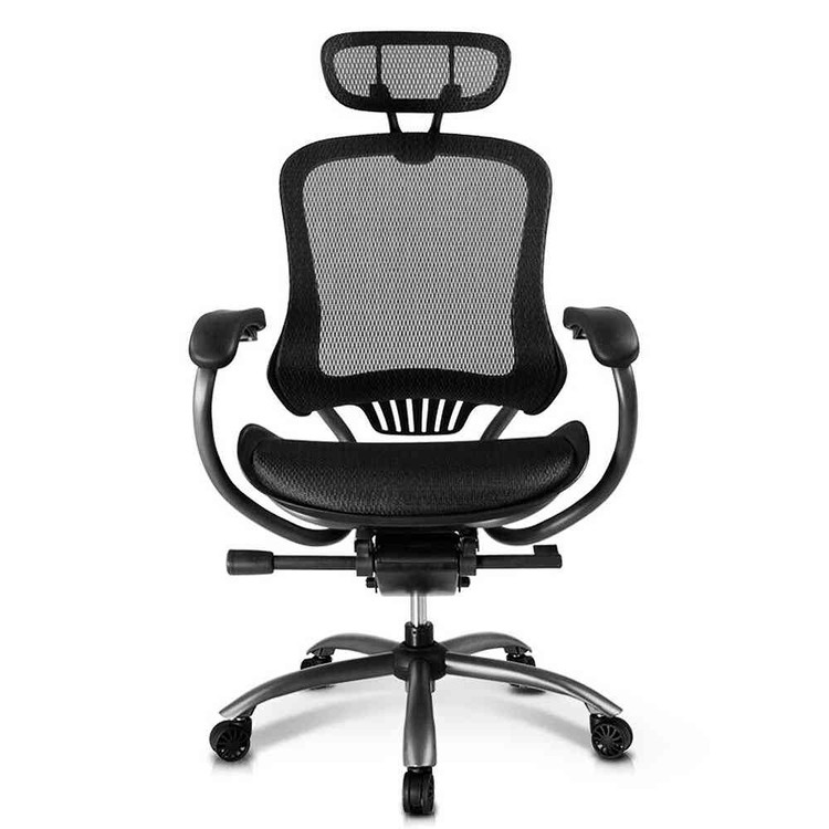 Eureka Ergonomic® High-Back Executive Mesh Swivel Office Computer Desk Chair with Armrest - Black - ERK-OC-002