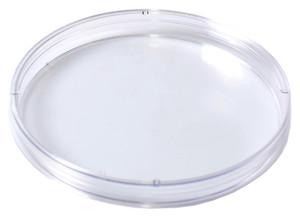 "KORD-Valmark Petri Dish, 100x10mm Mono Plate, ""Space Saver"", Slippable, case/750"