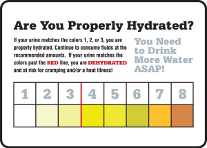 "Safety Signs: Are You Properly Hydrated, 10"" x 14"", Pack/10"