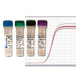 Accuris qMax First Strand cDNA Synthesis Flex Kit, 200 reactions