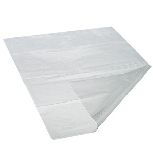 "3 x 5"" LDPE 2 MIL Clear Open End Bag, case/1000"