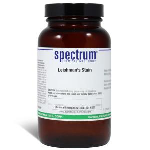 Leishman's Stain, 100g, Each
