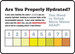 """Safety Signs: Are You Properly Hydrated, 10"""" x 14"""", Pack/10"""