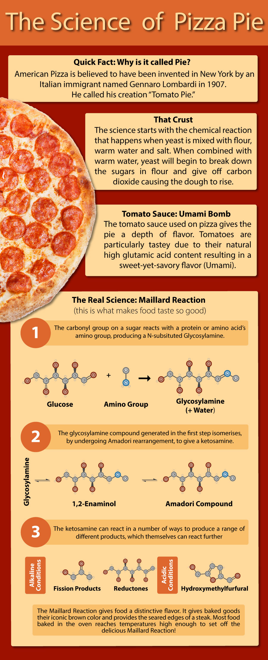 science-of-a-pizza-pie-900px.jpg