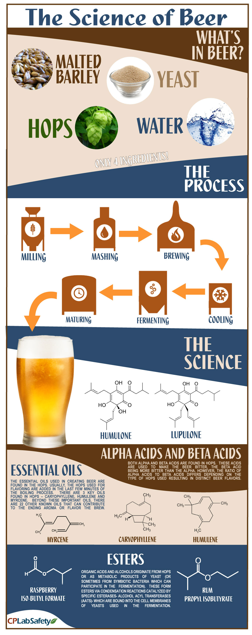 science-of-beer2-fixed.jpg