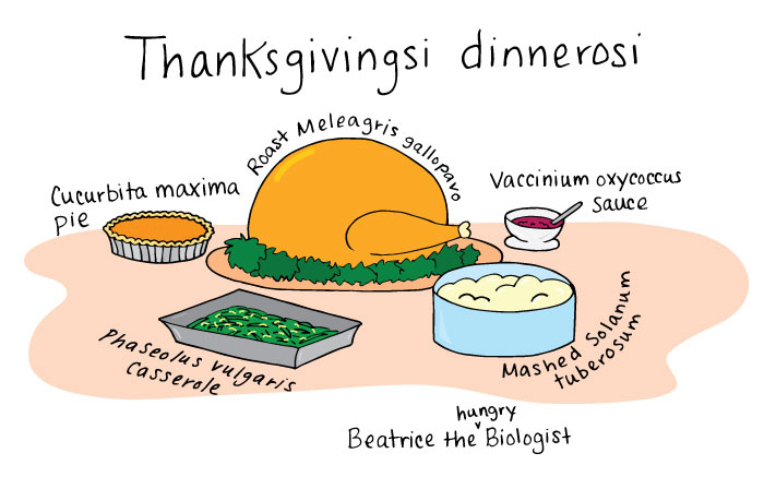 thanksgivingspecies.jpg