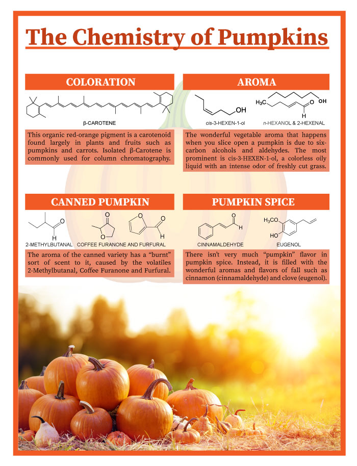 the-chemistry-of-pumpkins-final-web.jpg