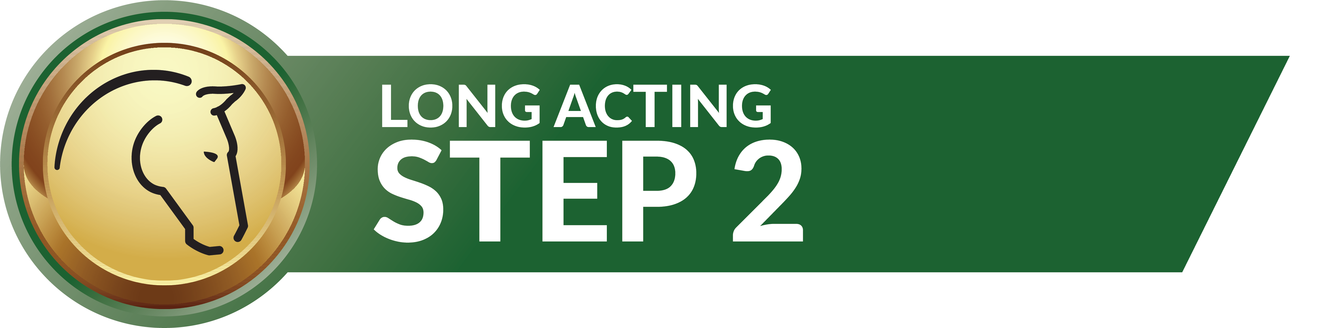 Step 2 Calming System
