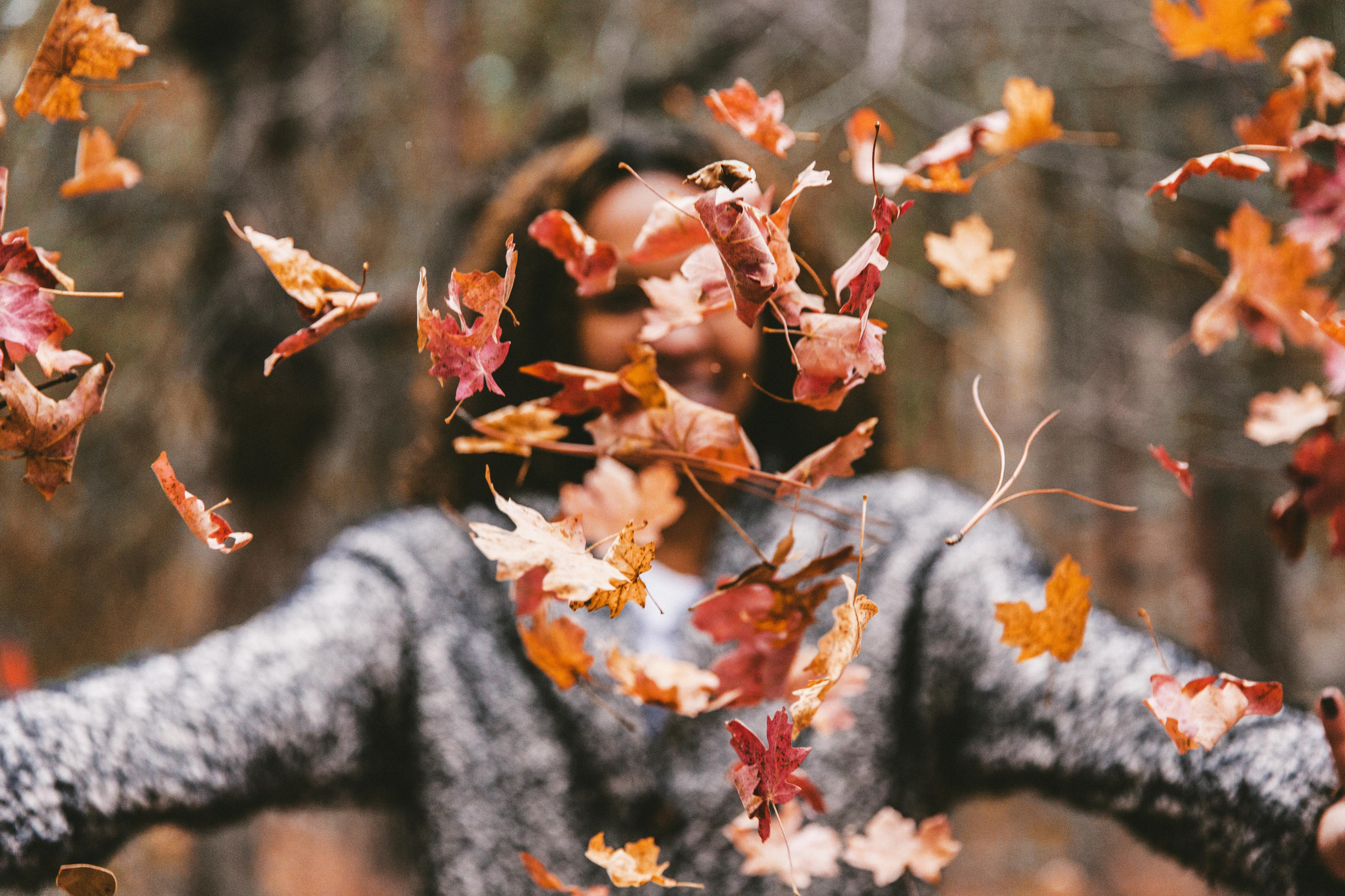 What's New for the Fall?
