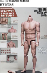 JX Toys - Strong Male Muscular Body S02