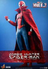 Hot Toys - What If:  Zombie Hunter Spider-Man